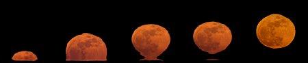 Восходящая Луна в форме Этрусской Вазы